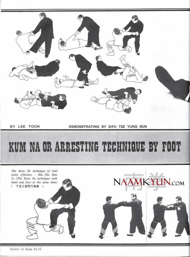 bak mei kung fu manual pdf