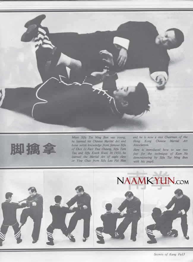 Chinese Kung Fu Ground Fighting Footlocks