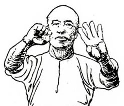 Hung Ga Kyun Salute