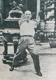 Pak Mei Kung Fu