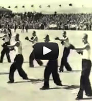 Rare vintage kung-fu video
