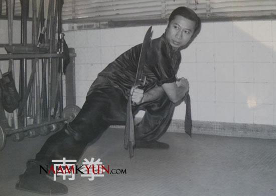 Lam Chun Fai - Double Butterfly Knives (Geui Chung Dou)